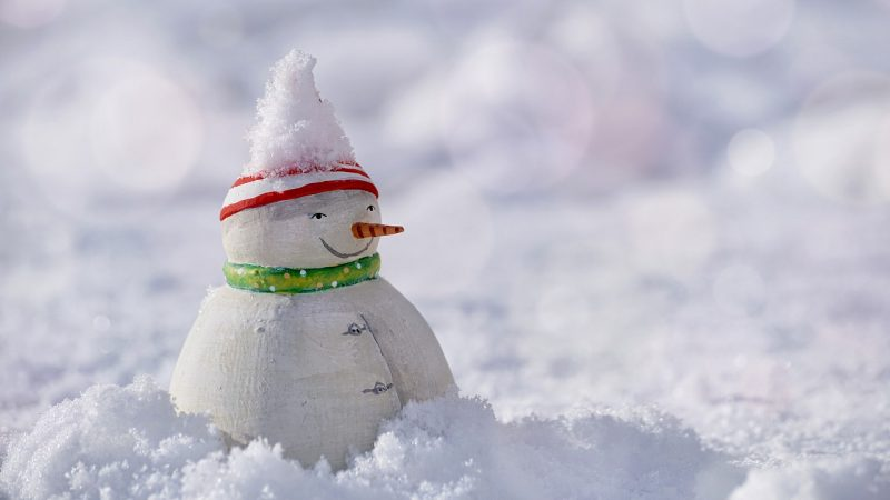 Snowdoll
